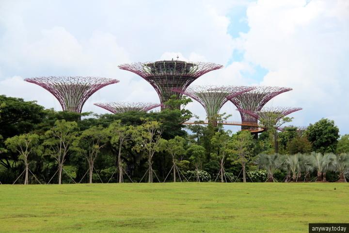 Сингапурские сады у залива